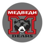 Медведи логотип