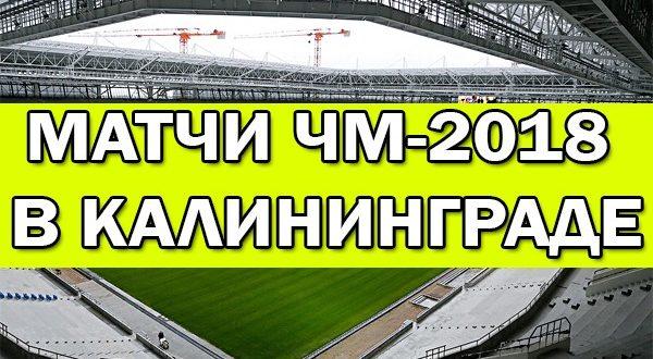 Какие матчи ЧМ-2018 пройдут в Калининграде