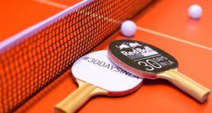 Правила настольного тенниса кратко: счёт, сколько партий, подачи