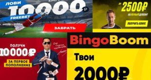 Какую букмекерскую конторы выбрать в России? Легальные БК